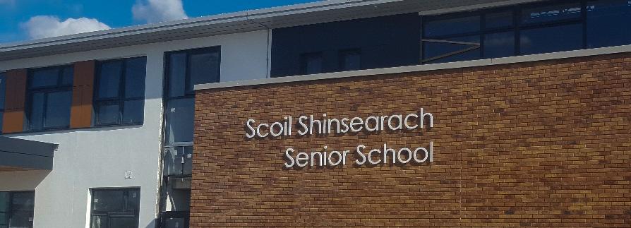 Stainless_Steel_Skyline_Sign_for_an_Irish_school